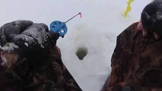Рыбалка на зеленом мысу