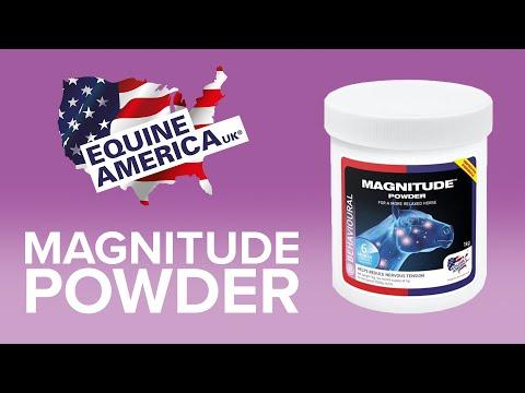 Magnitude - 1kg