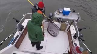 Океанская рыбалка. Снасти, борьба и крабы на ловушки. Такое интересно даже в дождь.