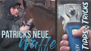 Wie wir unsere Pferde scheren!   Tipps & Tricks   RidersDeal