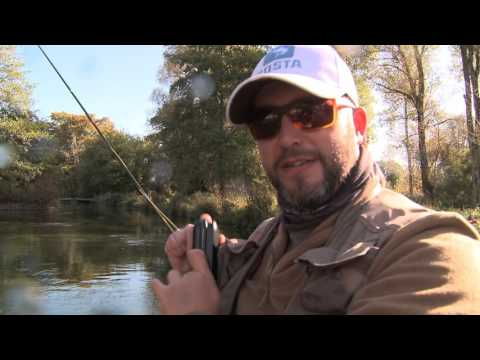 Grayling on the River Test