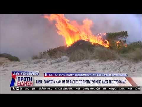 Επιχειρήσεις για την κατάσβεση πυρκαγιάς στο δάσος της Στροφιλιάς | 03/04/19 | ΕΡΤ