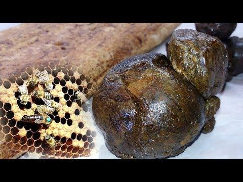 Барсучий жир аденома простаты