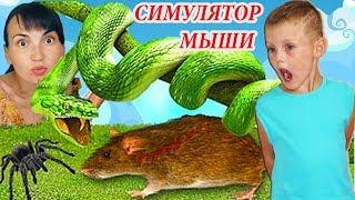 СИМУЛЯТОР Маленькой МЫШИ #2 Выживание в лесу Укусила Мышь и поймали ПАУКА детский летсплей