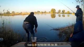 Рыбалка в тольятти бирля кривая