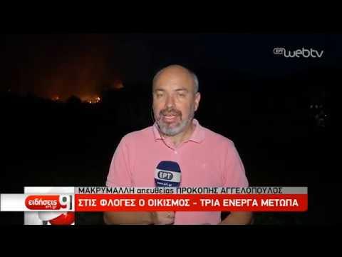 Μάχη με τις φλόγες στην Εύβοια – Εκκενώθηκαν χωριά – Άμεση κινητοποίηση | 13/08/2019 | ΕΡΤ