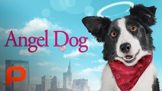 Angel Dog (Full Movie) Family Drama | Uplifting dog story