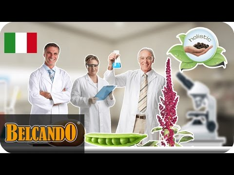 Ingredienti di cibo per cani BELCANDO | #3 Senza cereali