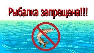 Законы о запрете рыбной ловле в краснодарском крае