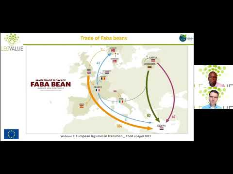 Legume-based value chains, farm gate and the market beyond