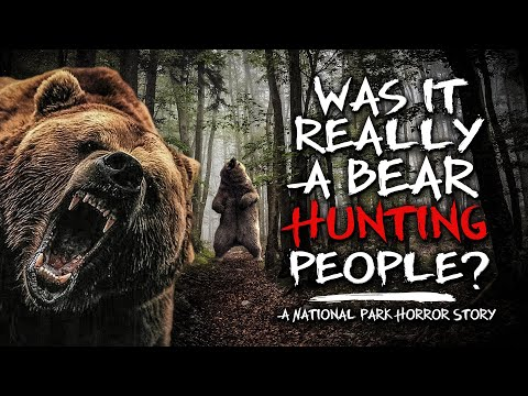 They Offered $20,000 For A Picture Of A Black Bear | A National Park Horror Story
