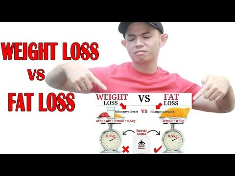 mp4 Weight Loss Dan Fat Loss, download Weight Loss Dan Fat Loss video klip Weight Loss Dan Fat Loss