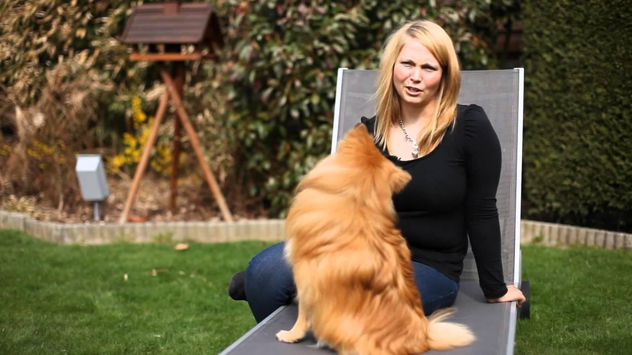 Sarah en Gizmo - Mijn Hond