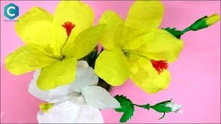 Descargar Mp3 De Flower Making With Paper Gratis Buentema