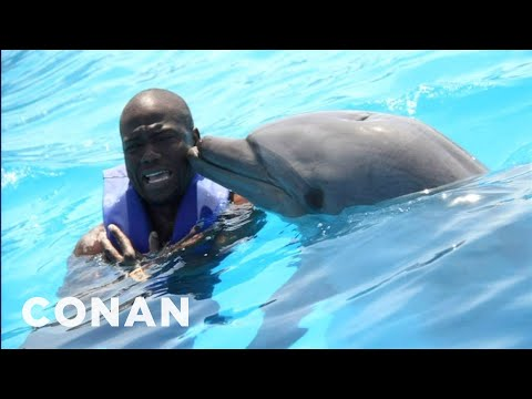 Kevin Hart: Dolphins Are Racist! - CONAN on TBS (видео)