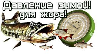 При каком давлении и ветре лучшая рыбалка