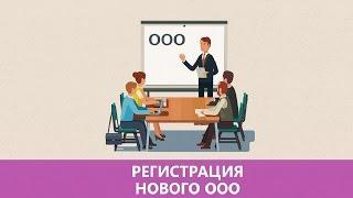 Регистрация ООО | Как открыть ООО самостоятельно: пошаговая инструкция