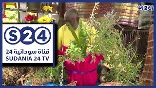 معرض الزهور - دفتر أحوال - صباحات سودانية