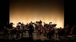 Hans Zimmer – Le Roi Lion (orchestre symphonique)