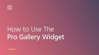 How to Use The Pro Gallery Widget in Elementor