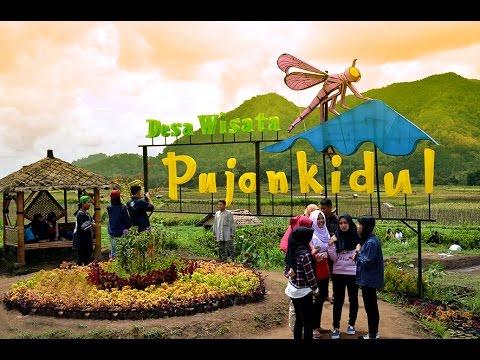 Video Desa Wisata Pujon Kidul Batu Malang