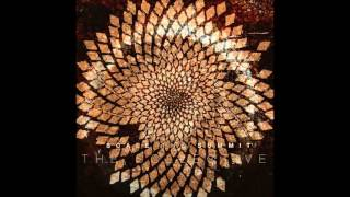 Scale The Summit - The Collective [full album]