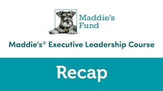 Maddie's Executive Leadership Course: Recap