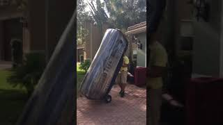 Professional Movers On The Job