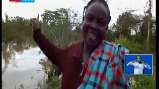 Wamiliki wa magari wamesalia kukadiria hasara baada ya mvua kuangusha mti ulioangukia magari yao