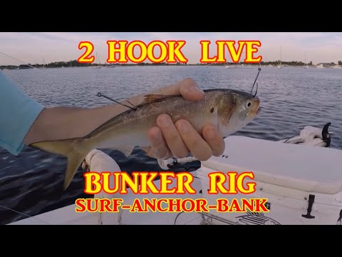 How to rig Live Bunker for surf, bank, or anchored. Striped Bass Rig. Striper Rig. Live bait rig