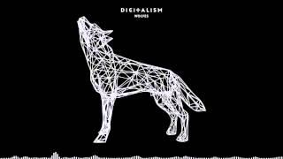 Digitalism   Wolves
