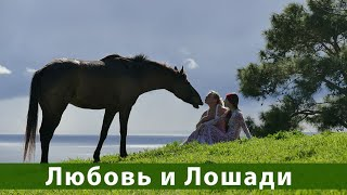 Любовь и Лошади Запись вебинара Ю. Худякова