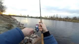 Рыбалка на новоладожском канале 2020 с берега
