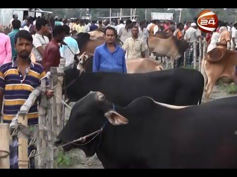 শেরপুরের প্রখ্যাত সামাদ বাজার পশুরহাট