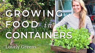 Quick Start Guide To Growing Food In Containers