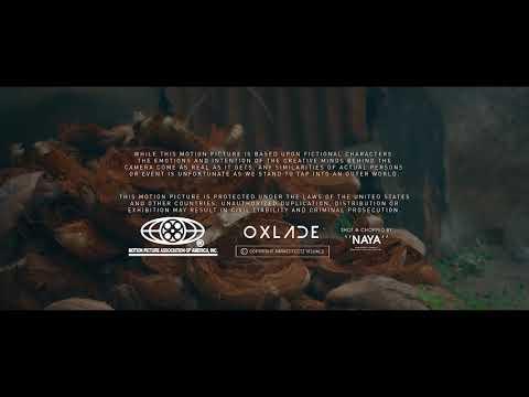 Oxlade – Shugar