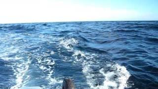 ホンダ2馬力+ゴムボート走行シーン 波あり (対馬東海岸).AVI