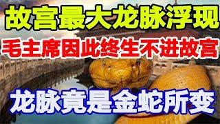故宫最大龙脉浮现,毛主席因此终生不进故宫,竟是金蛇所变!