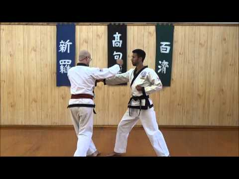 River Valley Tang Soo Do Academy - One Step Drills - Sequential ...