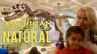 American Museum of Natural History New York Full Tour by HourPhilippines.com