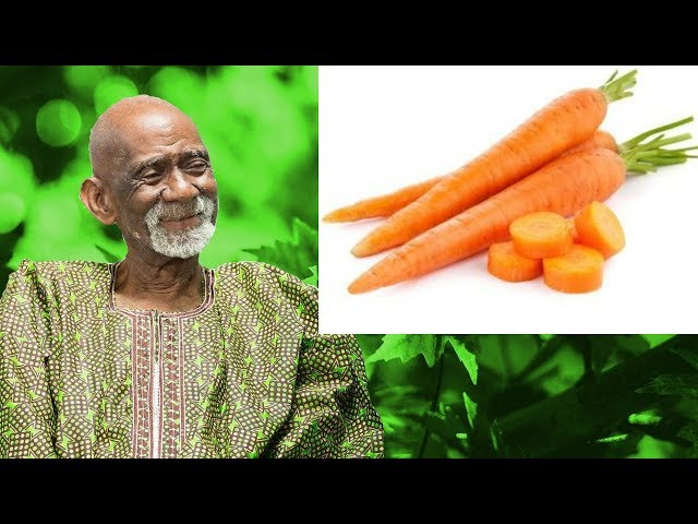 10 Of The Best Podcasts To Help You Dr. Sebi Dr. Sebi Sea Moss