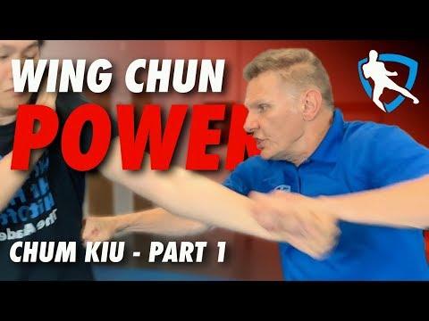 Wing Chun Power! - Chum Kiu Applications Part 1
