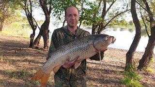 Черви для рыбалки рыбалка в астрахани