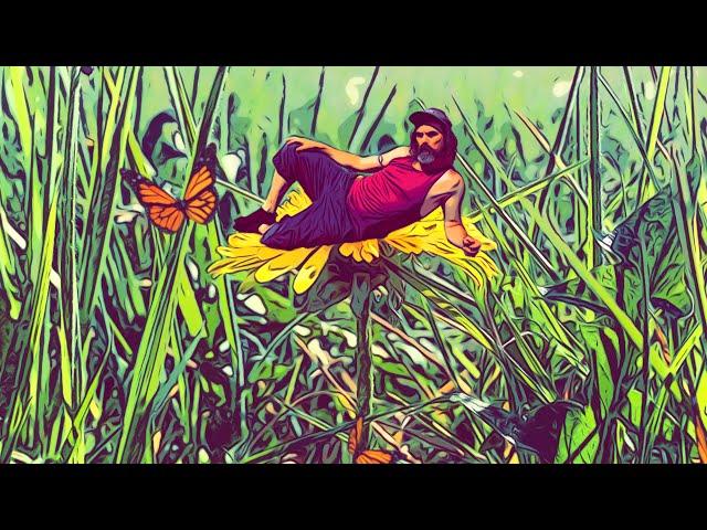 Your Garden Grows - Drew Makes Noise