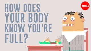 How does your body know you