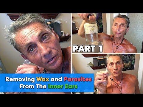 Le nettoyage des parasites par la méthode semenovoj
