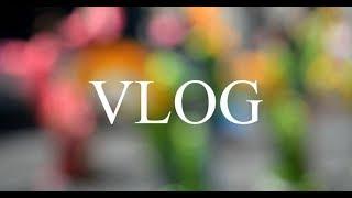 Недельний влог/Как муж проводит время с сыном/Турок на кухне/мои подружки