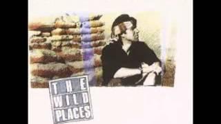 Dan Fogelberg - The Wild Places (Full Album)  1990