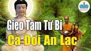 Phật Dạy Người Có Tâm Từ Bi Cả Đời Luôn Được Hạnh Phúc - An Lạc Muôn Đời Thanh Thản