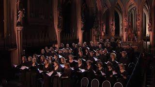 Barber   AGNUS DEI (arr. Adagio For Strings)   Rotterdam Symphony Chorus   (LIVE)